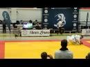 Finnish bjj open 2013 Elite 1005