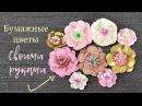 Цветы из бумаги Своими руками БУМАЖНЫЕ ЦВЕТЫ 2 Paper flowers