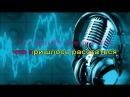 Ион Суручану - Незабудка, караоке DJSerj