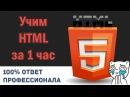 Учим HTML за 1 Час! От Профессионала