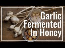 How To Make Garlic Fermented In Honey || Le Gourmet TV Recipes