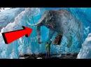 10 ЖИВОТНЫХ замороженых ВО ВРЕМЕНИ ТАЕТ ЛЕД