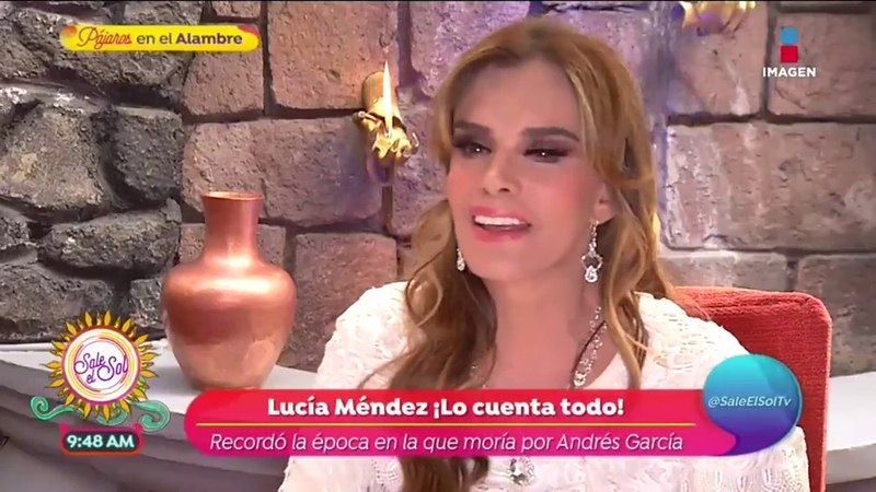 ¡Lucía Méndez cuenta todo lo que sucedió con Andrés García! | Sale el Sol