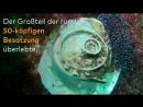 U 966 Taucher entdecken deutsches U Boot aus dem Zweiten Weltkrieg