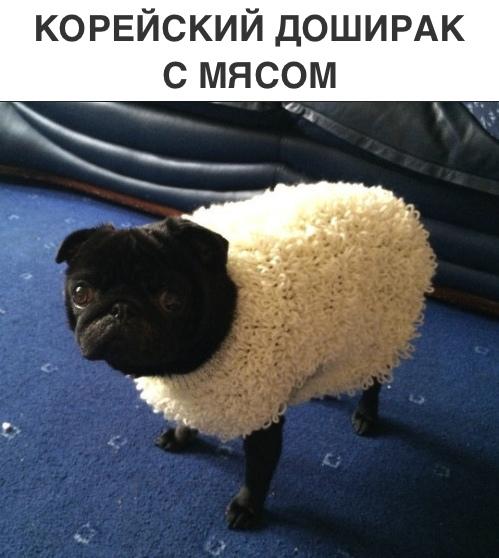 mVOP-0Fwp3o.jpg