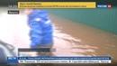 Новости на Россия 24 Потоп в Иркутской области вой собак вовремя разбудил дачников