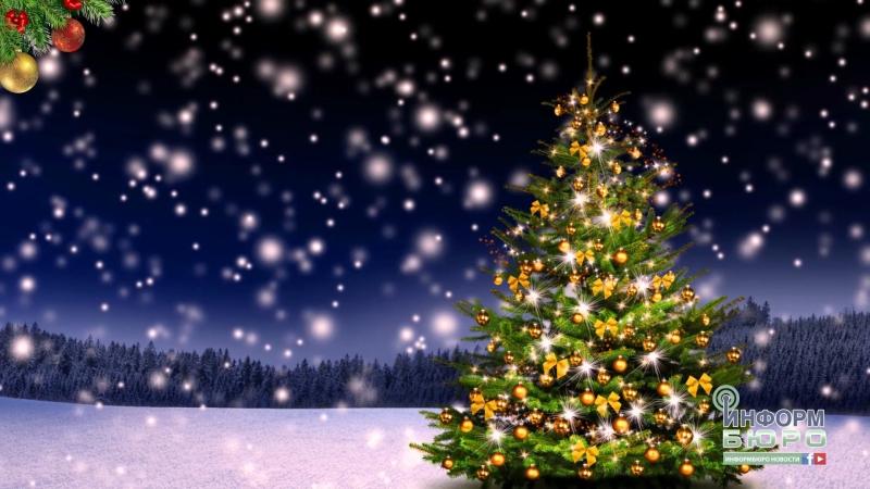 Історія новорічної ялинки та її святкового вбрання