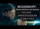 Волан-де-Морт Происхождение наследника русская МНОГОГОЛОСАЯ озвучка от NikiStudio