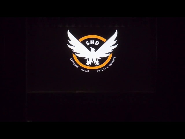 Goose and Kenga Tom Clancy's The Division SHD Agents