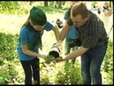 Самарские школьники высадили молодые дубы в Загородном парке