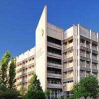 nuos.university