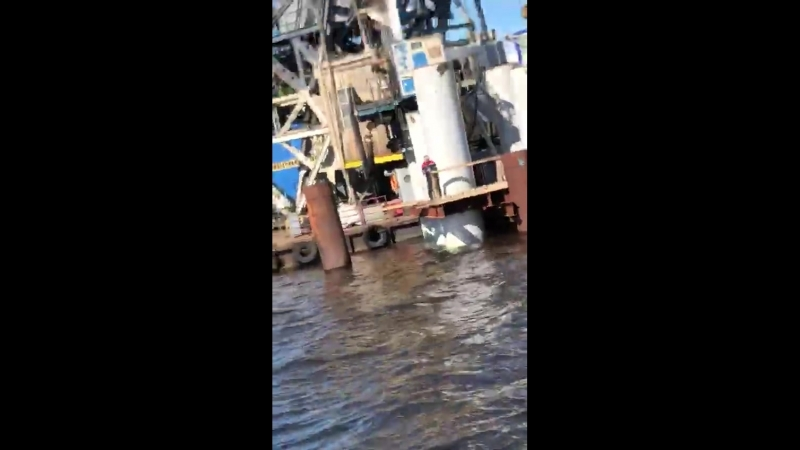 Горбатый кит в Выборгском заливе