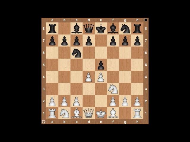 Шахматы для начинающих. Лучшие дебюты за белых. Обучение шахматам.