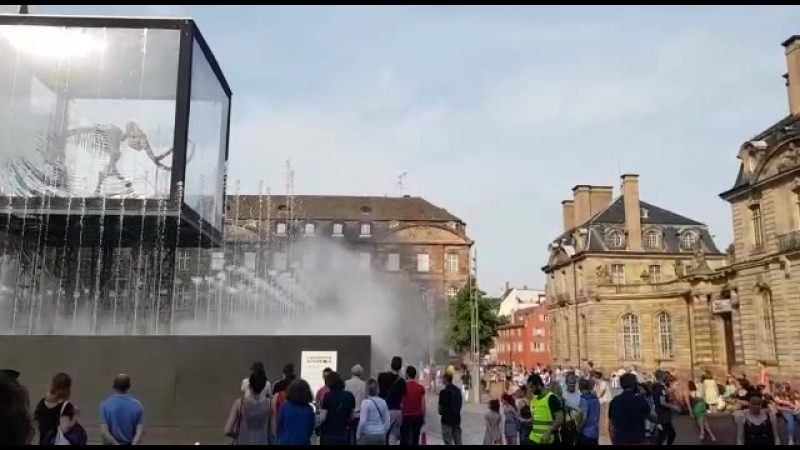 Поющий фонтан у Страсбургского собора