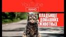 Фильм Кладбище домашних животных Ужасы Триллер 2019 Стивен Кинг