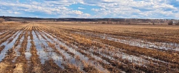 Переуплотнение почвы
