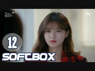Озвучка SOFTBOX Уборка со страстью 12 серия
