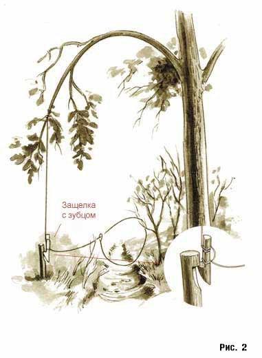 vniw7RIsS4k - Выживания в лесу: Как ловить живность