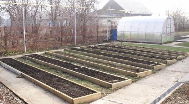 Заметки садовода о пользе планирования огорода.