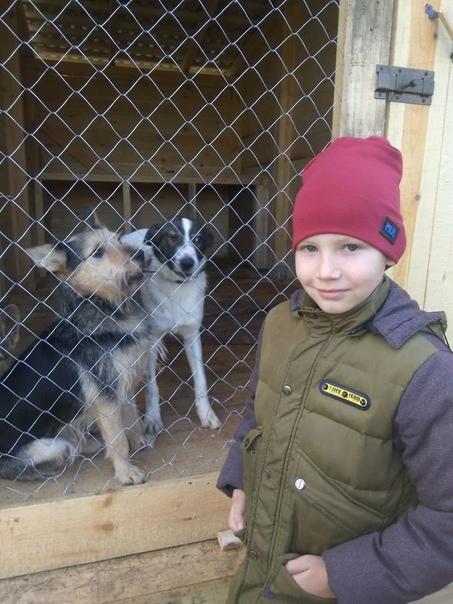 Ну давайте что то хорошее В последнее время мы часто рассказывали о жестокости детей по отношению к животным, но не все потеряно .. На фото 9-летний Павел Абрамов из Нижегородской области. На