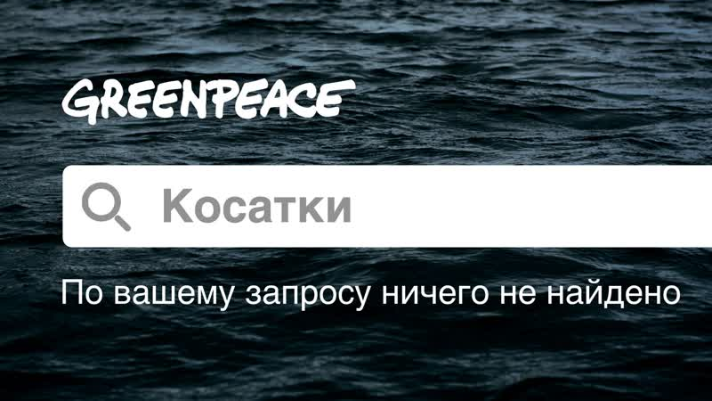 По запросу Косатки ничего не найдено. Greenpeace