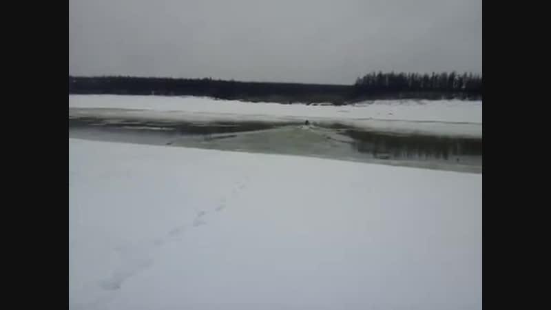 Эвенкия Охотники переплывают реку Котуй на снегоходе 'dtyrbz j jnybrb gthtgksdf n htre rjneq yf cytuj jlt