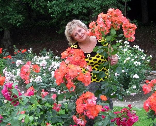 Екатерининский продолжает принимать заказы! Если у Вас есть желание вырастить цветы дома или в саду, но не знаете как и где приобрести качественный посадочный материал, то подписывайтесь на