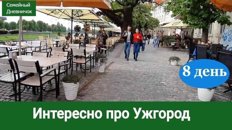 Ужгород Закарпатье Боярышник красиво цветёт 8 день