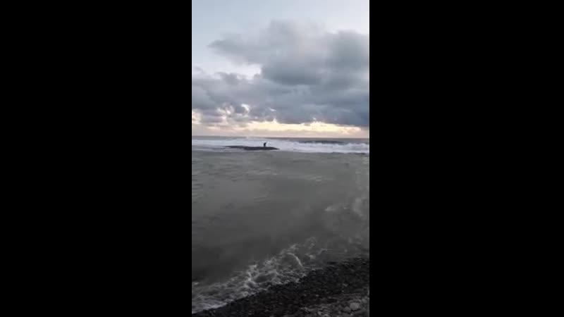 В Сочи детей унесло в море