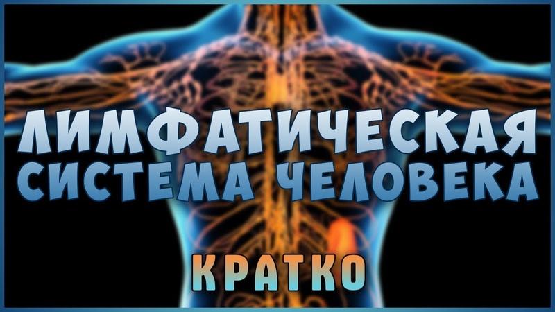 Застой и Очистка Лимфы Знай и живи Лимфатическая система Лимфоузлы Фролов Ю А