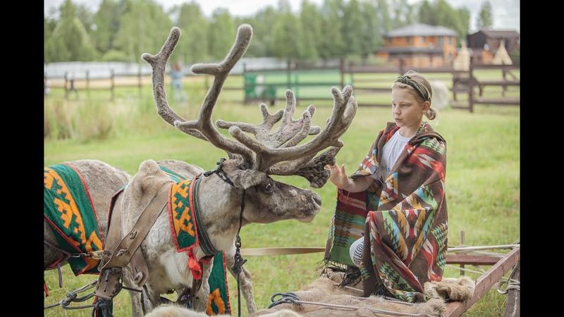 Фестиваль День оленя познакомил жителей округа с национальной культурой народов Севера