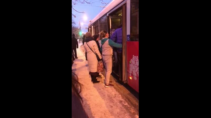 «Сколько боли и страданий»: на видео сняли, как кондуктор утрамбовывает в автобус пассажиров