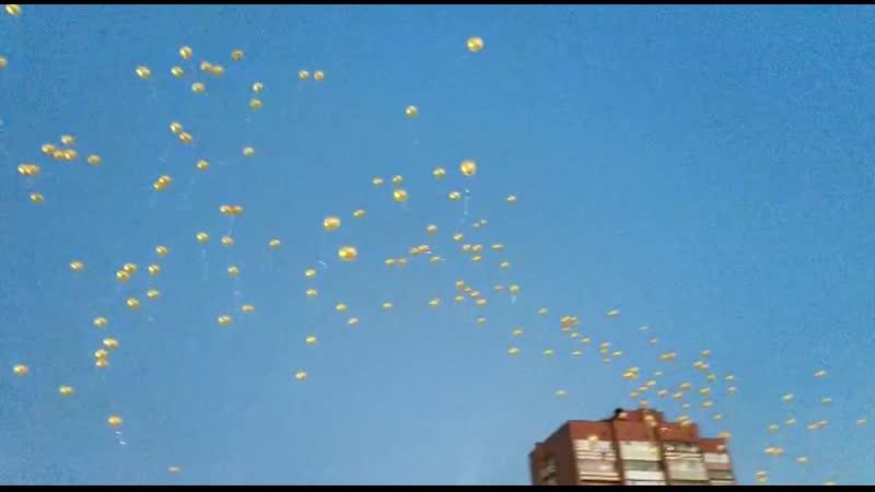 В этом году в Орехово-Зуевском округе 205 медалистов. Именно столько золотых шаров было отпущено в небо.
