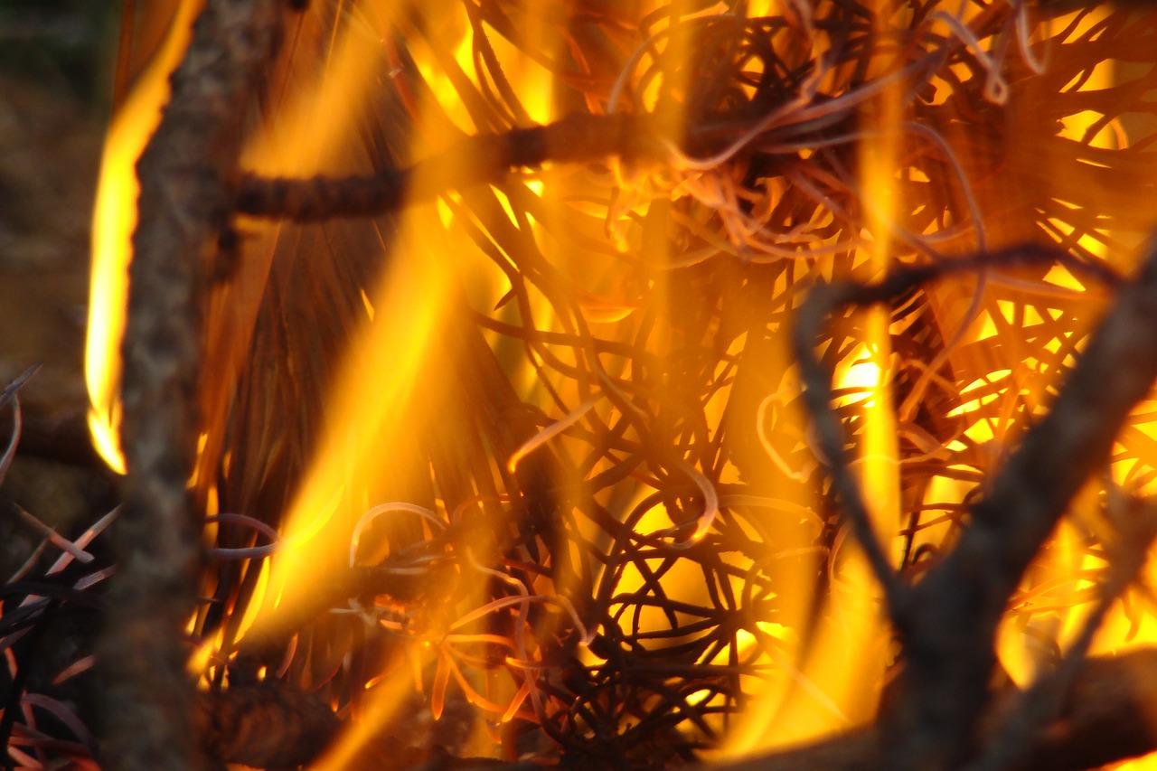 Волжская организация привлечена к ответственности за пожар на полигоне ТБО