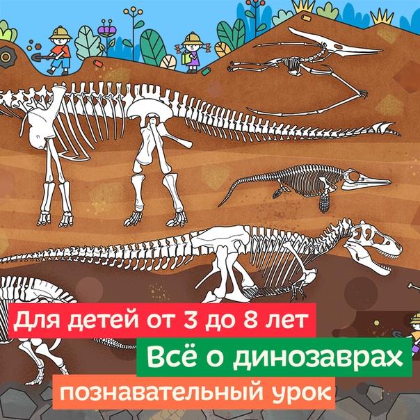 Развлекательно-познавательный сайт для детей от 3 до 8 лет Кто обитал на планете 200 миллионов лет назад, у кого в желудке было много камней, и какой динозавр был размером с два футбольных поля,