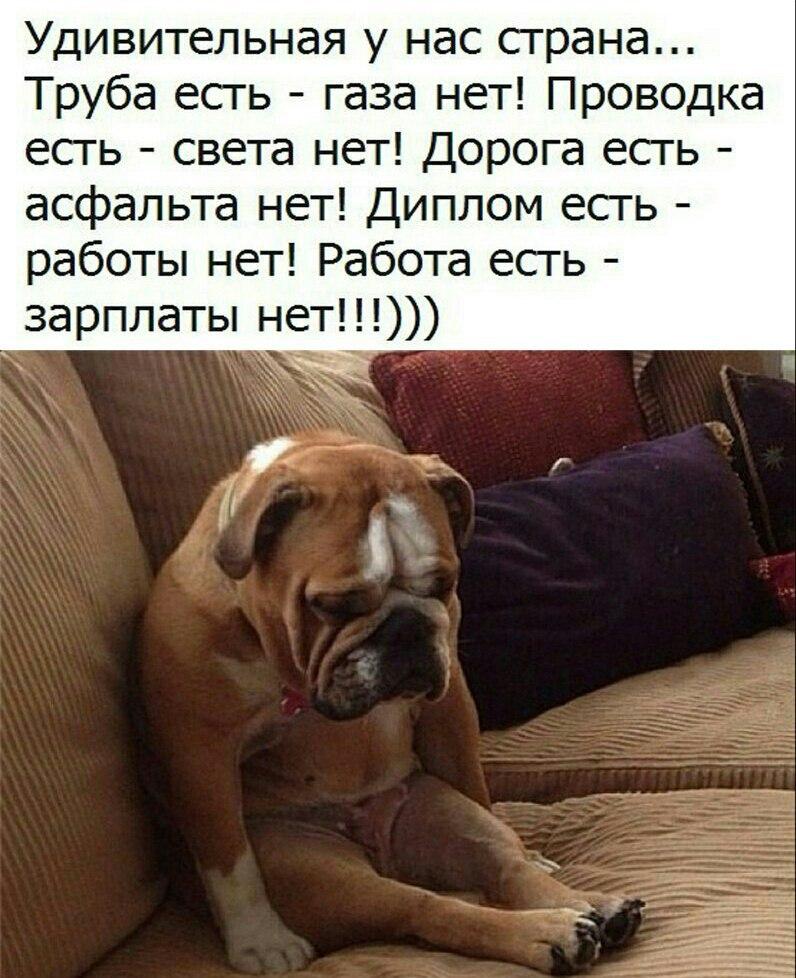 https://sun1-17.userapi.com/c543103/v543103123/3d7d7/pHnLNMTUaUM.jpg