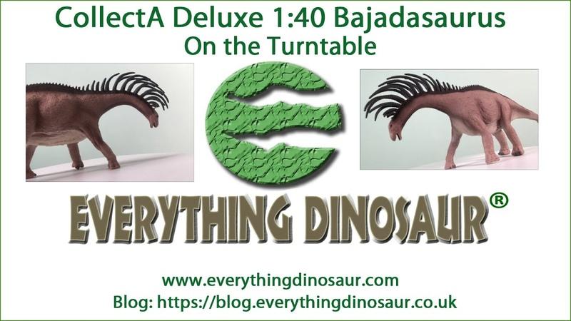 CollectA Deluxe Bajadasaurus Turntable Tuesday