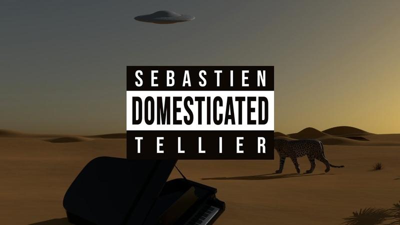 Sébastien Tellier Domestic Tasks Official Video