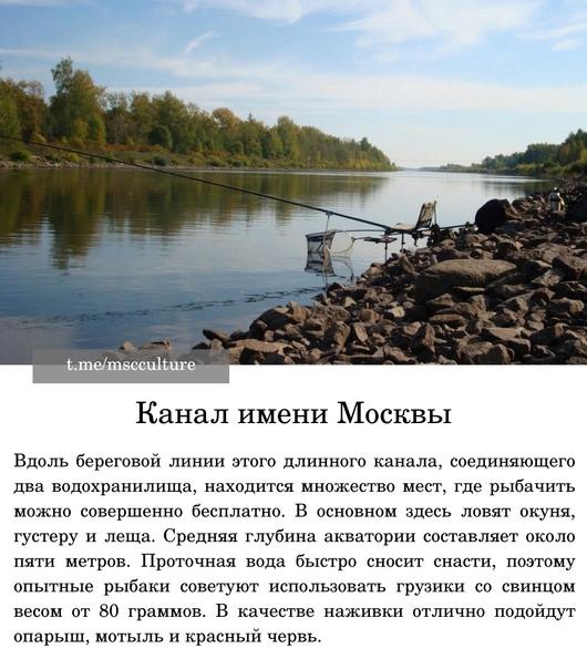 ТОП-6 бесплатных мест для рыбалки в Мособласти:...
