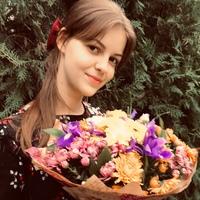 Елена Кривошеенко