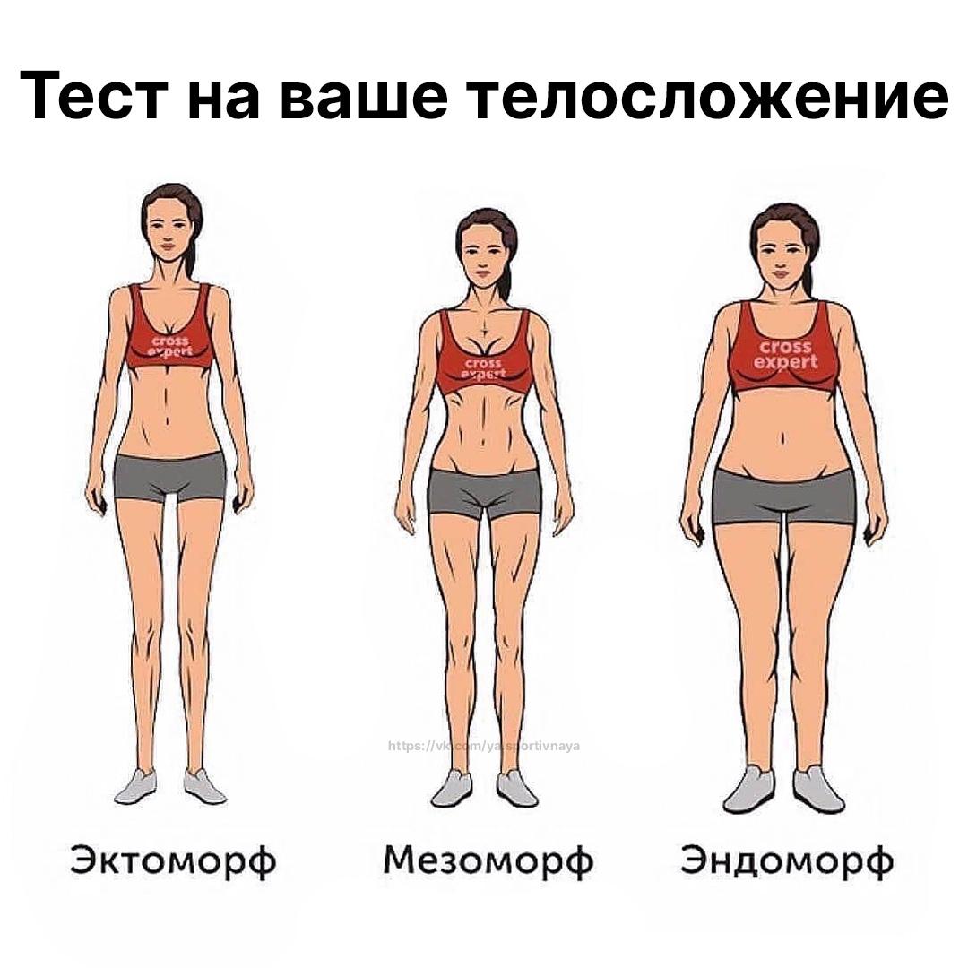 Определяем свой тип телосложения по формуле:⠀