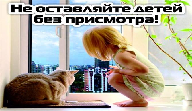 Акция «Безопасное окно», изображение №2