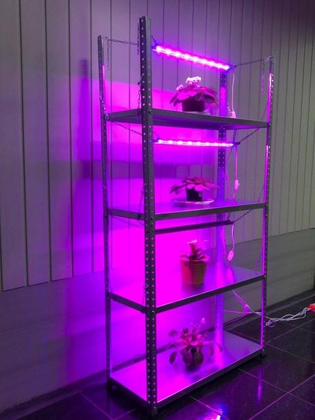 Подсветка для растений и рассады в интернет-магазине Lightwer : Фитолампы;Стеллажи для рассады с подсветкой;Фитосветильники разного размера и мощности;Все для выращивания рассады и подсветки