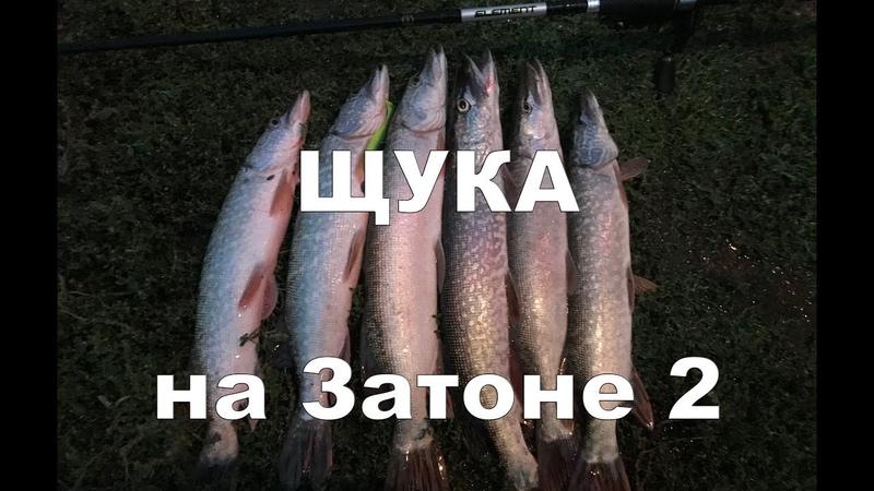 Рыбалка на Щуку в затоне Часть2