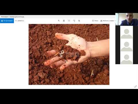 Онлайн занятие Плодородие почвы Измерение температуры почвы