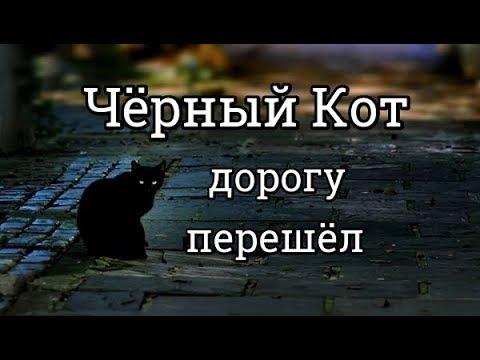7777 Нумерология/Эзотерика: Чёрный Кот дорогу перешёл