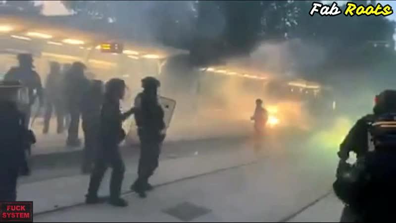 Charge des CRS à coups de matraques sur les manifestants justicepourAdama
