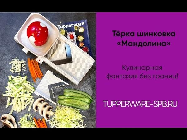 Тёрка шинковка Мандолина с 2 насадками / tupperware-spb.ru / для дома и кухни