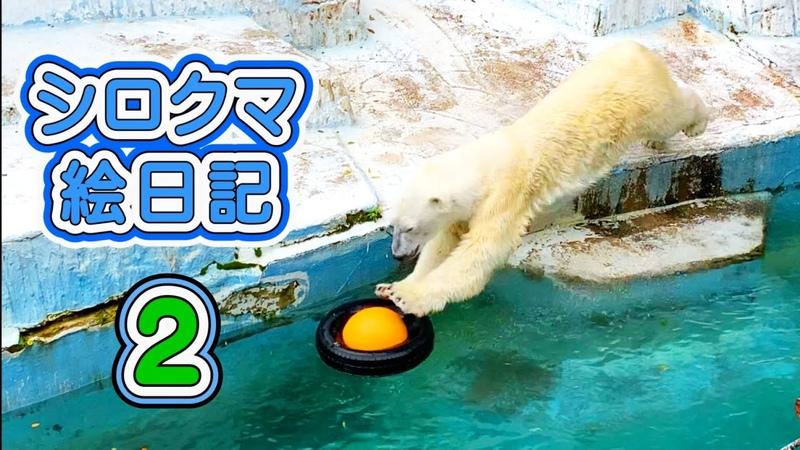 天王寺動物園 今回の動画は「未公開」のものです。このように「シロクマシリーズ」では使っていない動画も、この「絵日記」シリーズでどんどんアップしていく予定です。