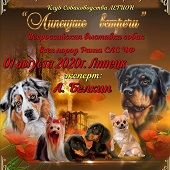 Завтра в «HILLPARK» – дети, собаки и Симона Да-Сильва
